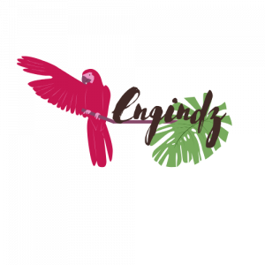 Engindz-logo